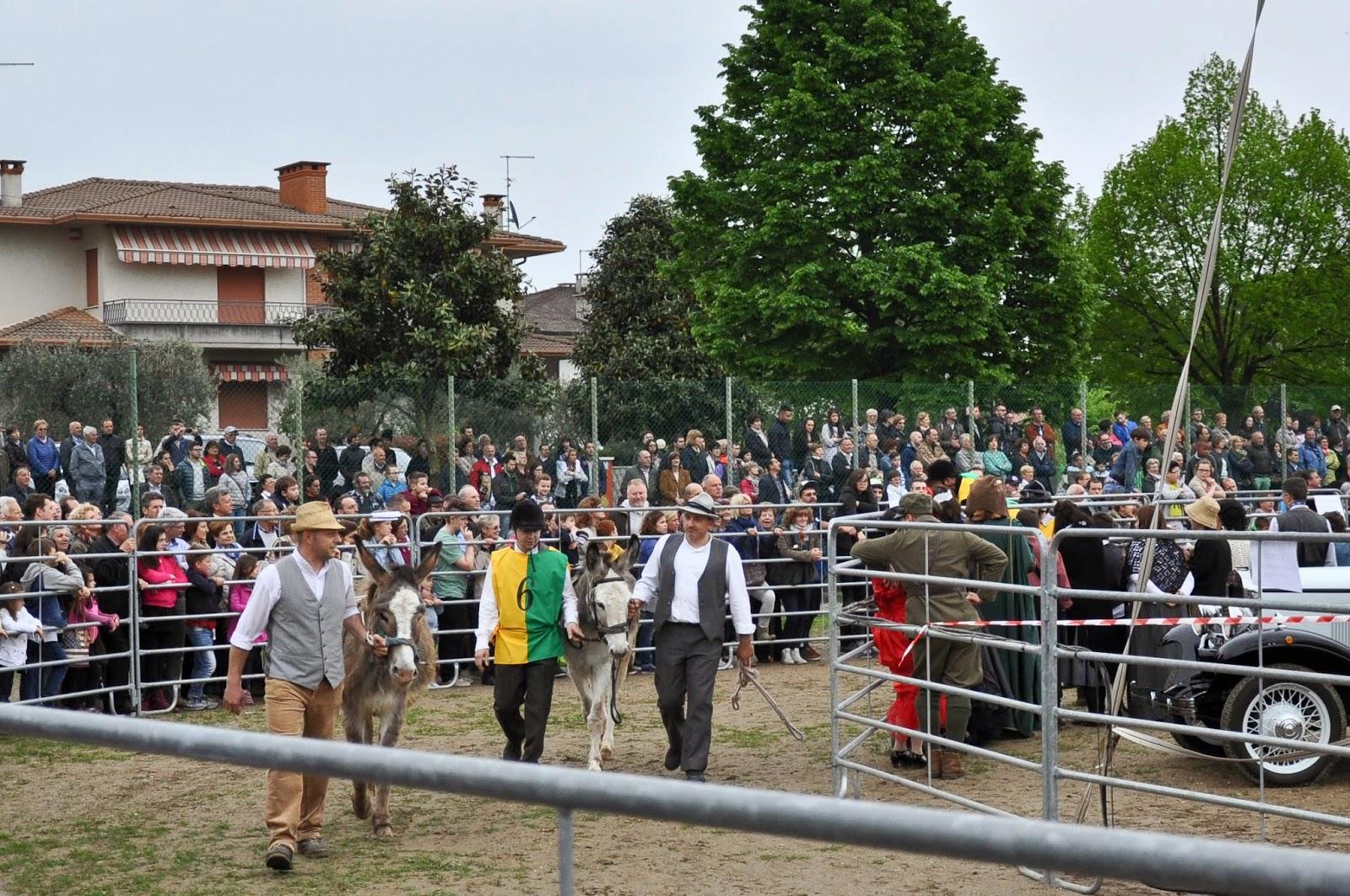 The Mussodrome, Donkey Race, Romano d'Ezzelino, Veneto, Italy-3