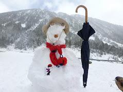 Un catganer fa un ninot de neu de primavera.