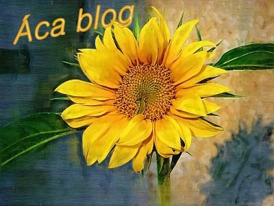áca-blog