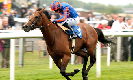 Top 31 Amazing And Dashing Horse Racing Wallpapers In Hd