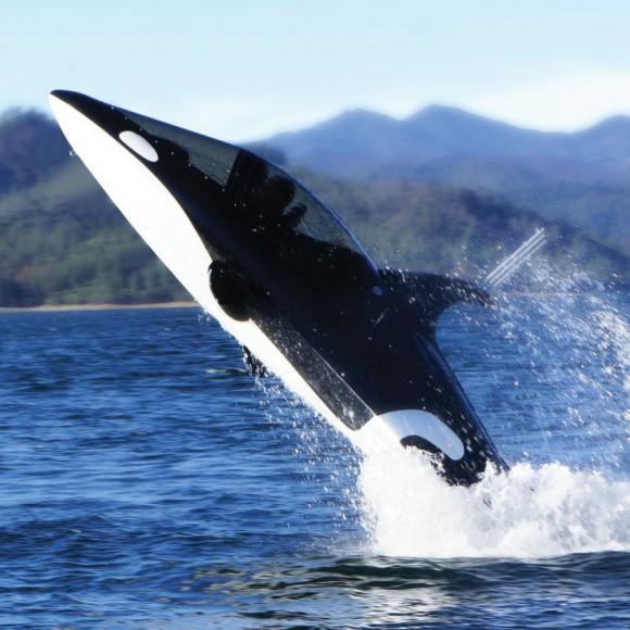 غواصة الحوت القاتل تصل سرعتها إلى 50 ميلا في الساعة علي سطح الماء