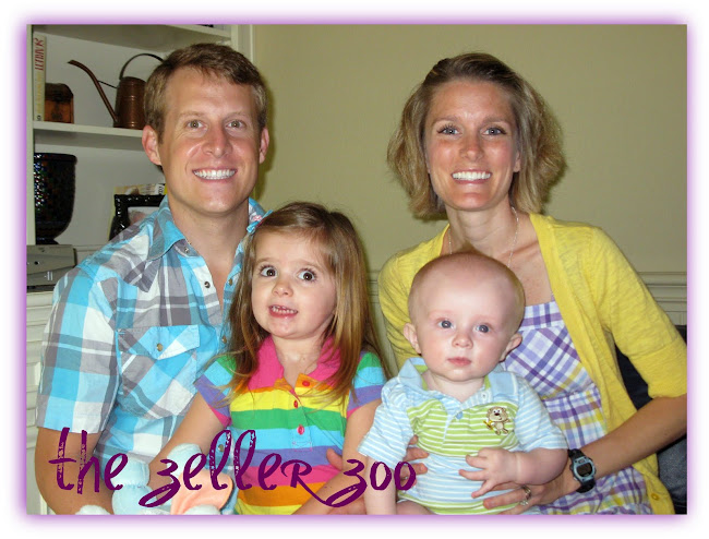 the zeller zoo