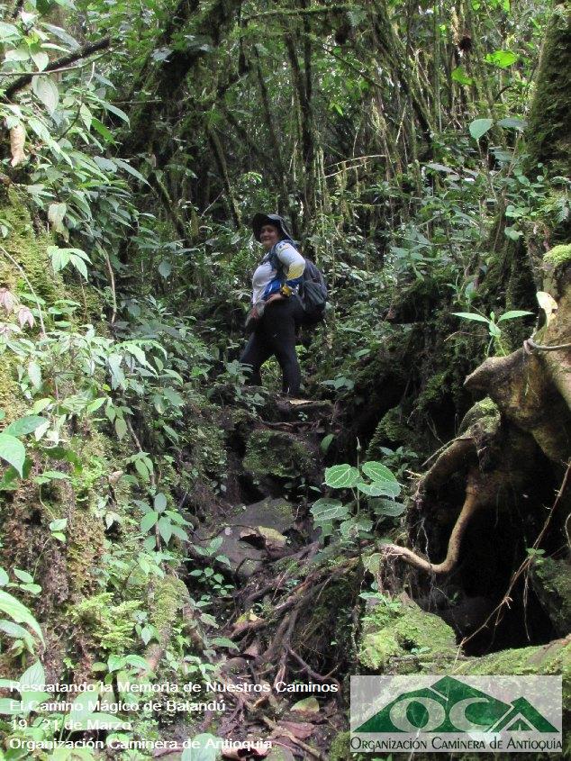 Camino de Balandú (Manuel Mejía Vallejo)