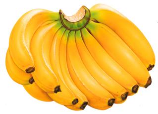 buah+pisang Manfaat Buah Pisang Bagi Kesehatan