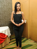 Catherine Tresa latest Photos at Paisa press meet-cover-photo