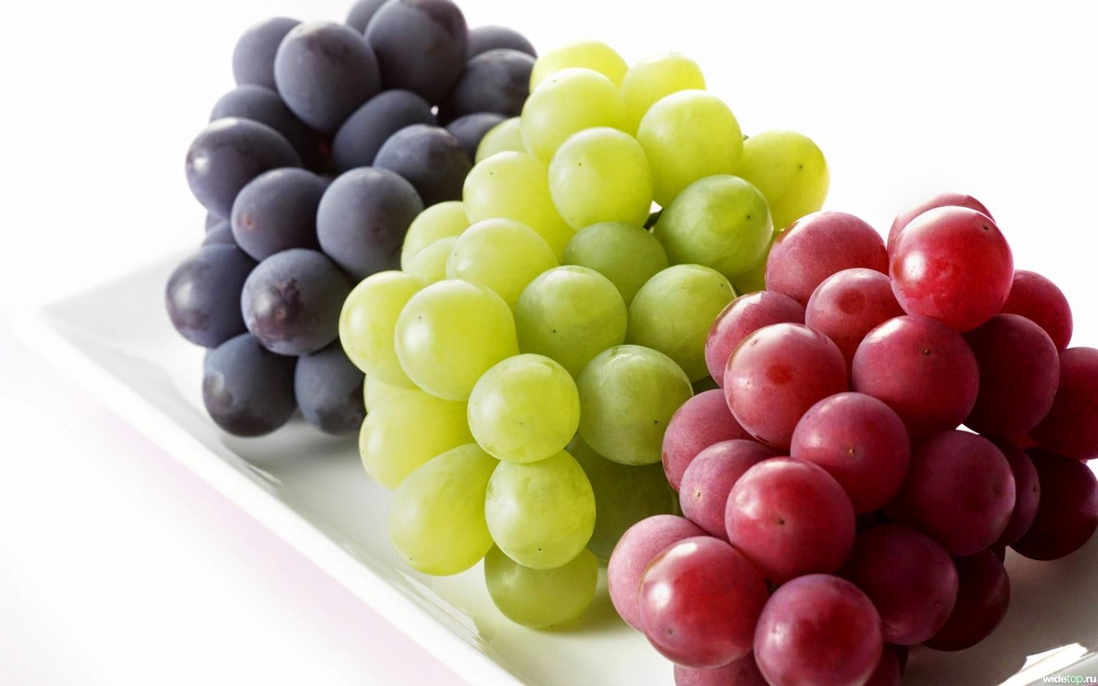 Kandungan Dan Manfaaat Buah Anggur