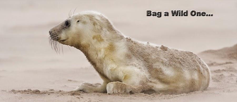 Bag a Wild One