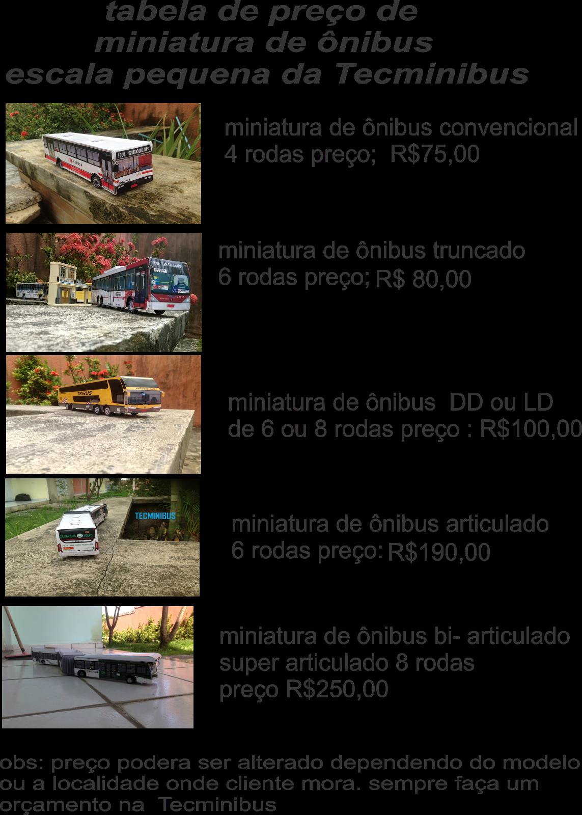 tabela de preço das miniaturas da Tecminibus