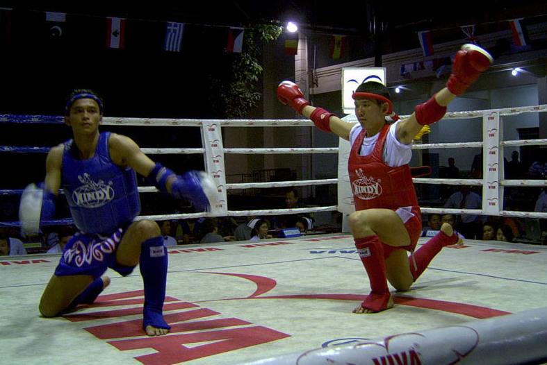 Fighting Style Muay Thai Vs Taekwondo Is Taekwondo