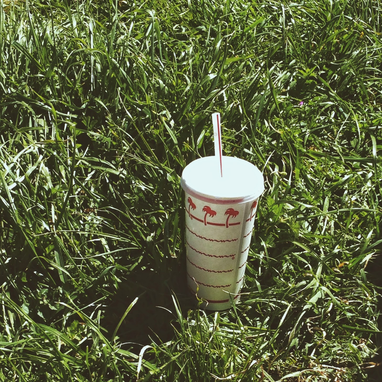 in-n-out cup in grass