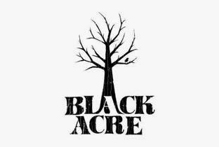 https://blackacre.databeats.com/