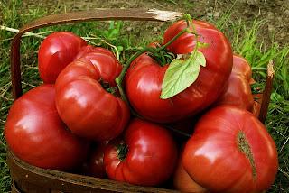 http://4.bp.blogspot.com/-DwXq0W8cHtM/UdW98kLK2eI/AAAAAAAAAhQ/sfSTH_U14_Q/s640/Brandywine+Heirloom+Tomatoes.jpg