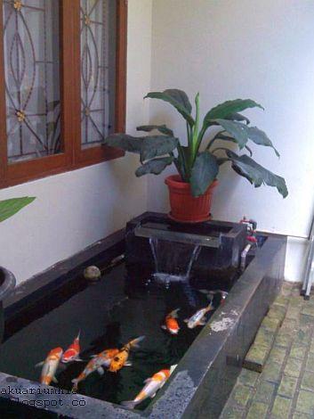 tips membuat kolam ikan minimalis cantik kliping online