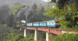 Ooty Blue Mountain Train