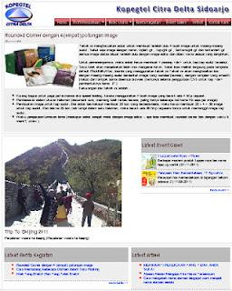 Project Aplikasi, Website Personal,Website kopegtel Citra Delta Sidoarjo
