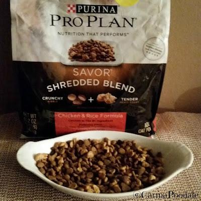 Bowl of Purina ProPlan