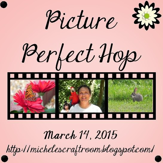 Picture Perfect Blog Hop