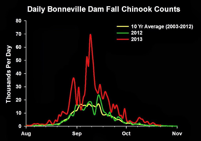 2013 Columbia River Fall Chinook Graph, Passage at Bonneville Dam