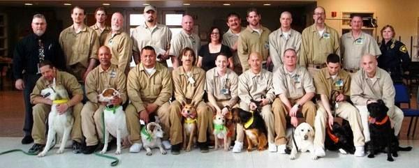 φυλακές σκυλιά