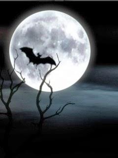 schöne Handy Halloweenbilder
