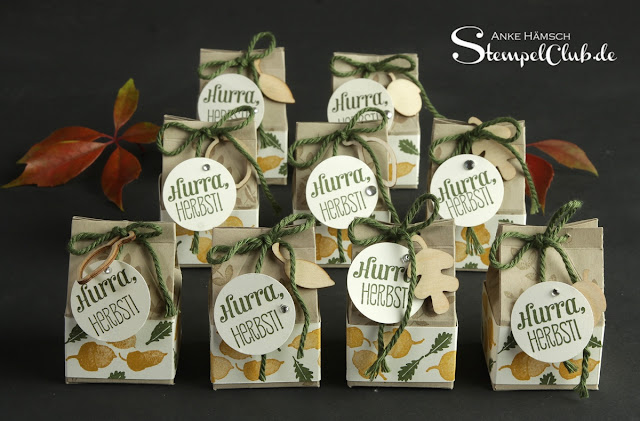 Anleitung, Template, Milchkarton.Stampin up, Herbst, Autumn