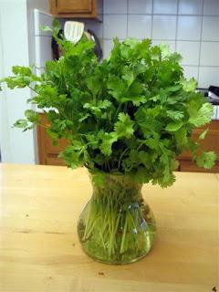 health benefits of cilantro leaves