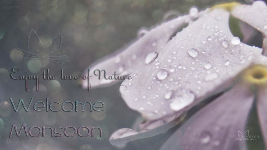 Khushi For Life Welcome To Monsoon Happy Monsoon Hd Pictures