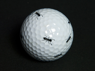 「助太力プリント」でゴルフボールに蟻(アリ)を印刷した写真