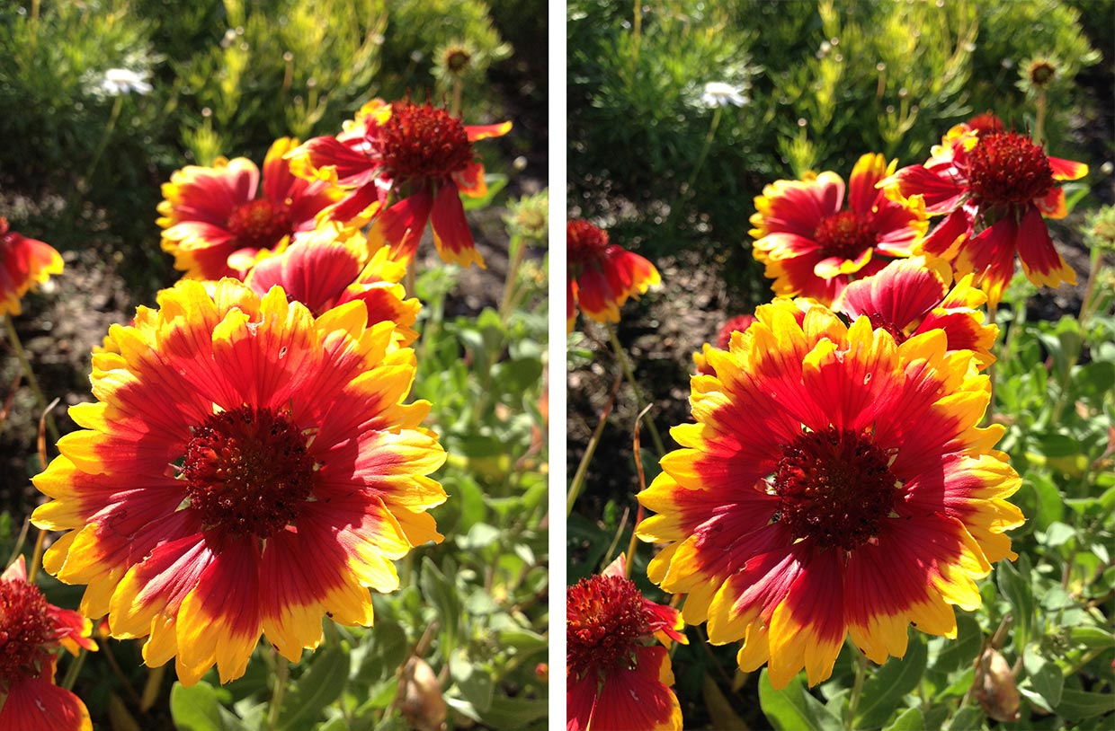how to make photos wider on iphone