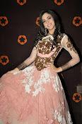Kanika Kapoor glamorous photos-thumbnail-12