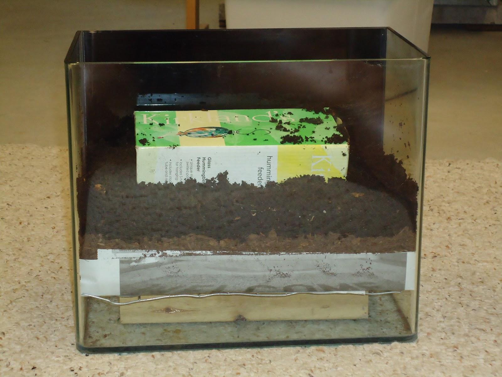 worm exhibit