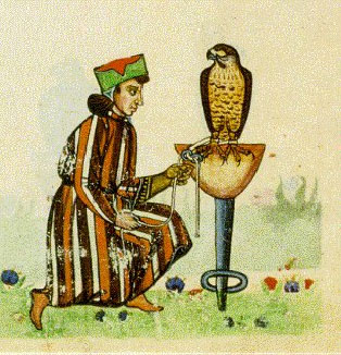 federigo falcon Federigo's falcon from the decameron giovanni boccaccio summary setting: italy, 14th century federigo is a young noble who falls in love with a beautiful married.