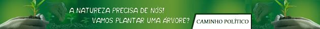 Greenpeace no Brasil