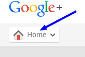 home button on google plus