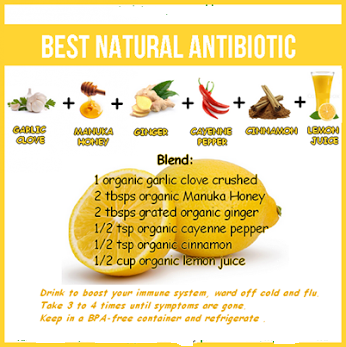 The best natural anti biotic for health