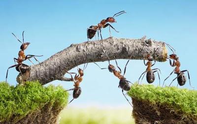 Tips memilih mitra bisnis yang tepat