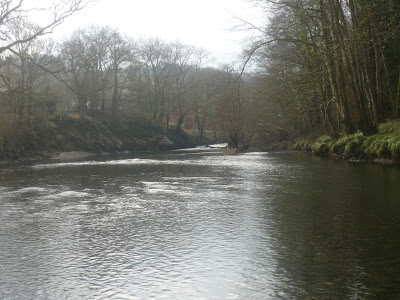 Black Pool River, Irfon, Builth Wells, Fly Fishing, Grayling