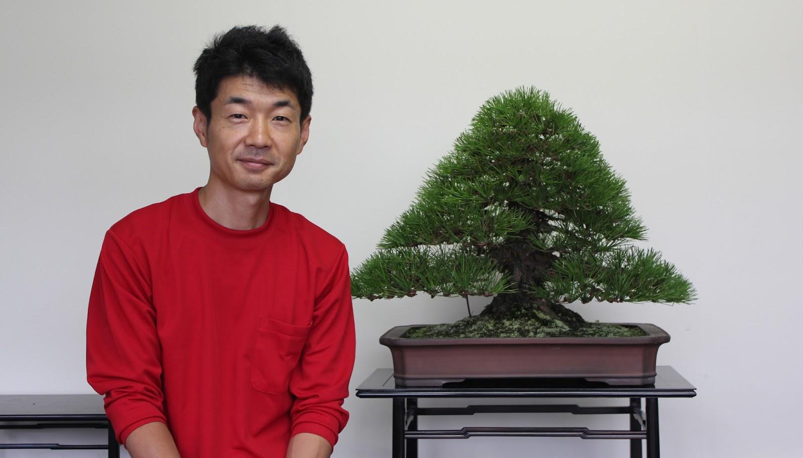 Kigawa39s Bonsai Blog Bonsai Artist Naoki Maeoka