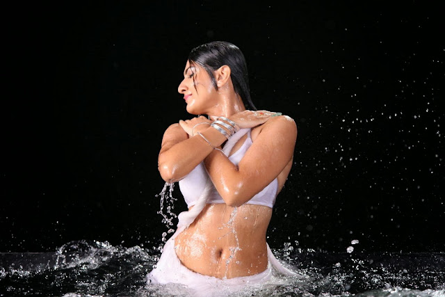 Actress Neelam Upadhyay  Pictures in Wet White Saree 0138.jpg