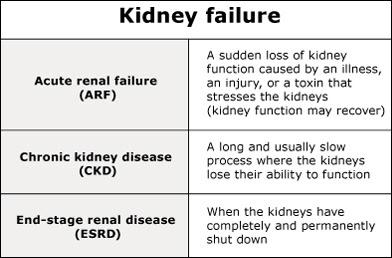 kidney failure homeopathy treatment in chennai