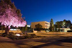 Universidade Hebraica lança Mestrado em Educação Judaica à distância