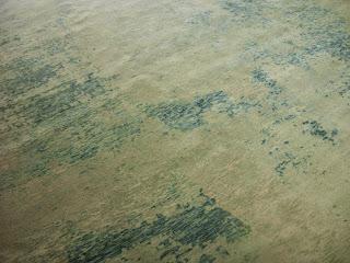 Luke Irwin inspired rug