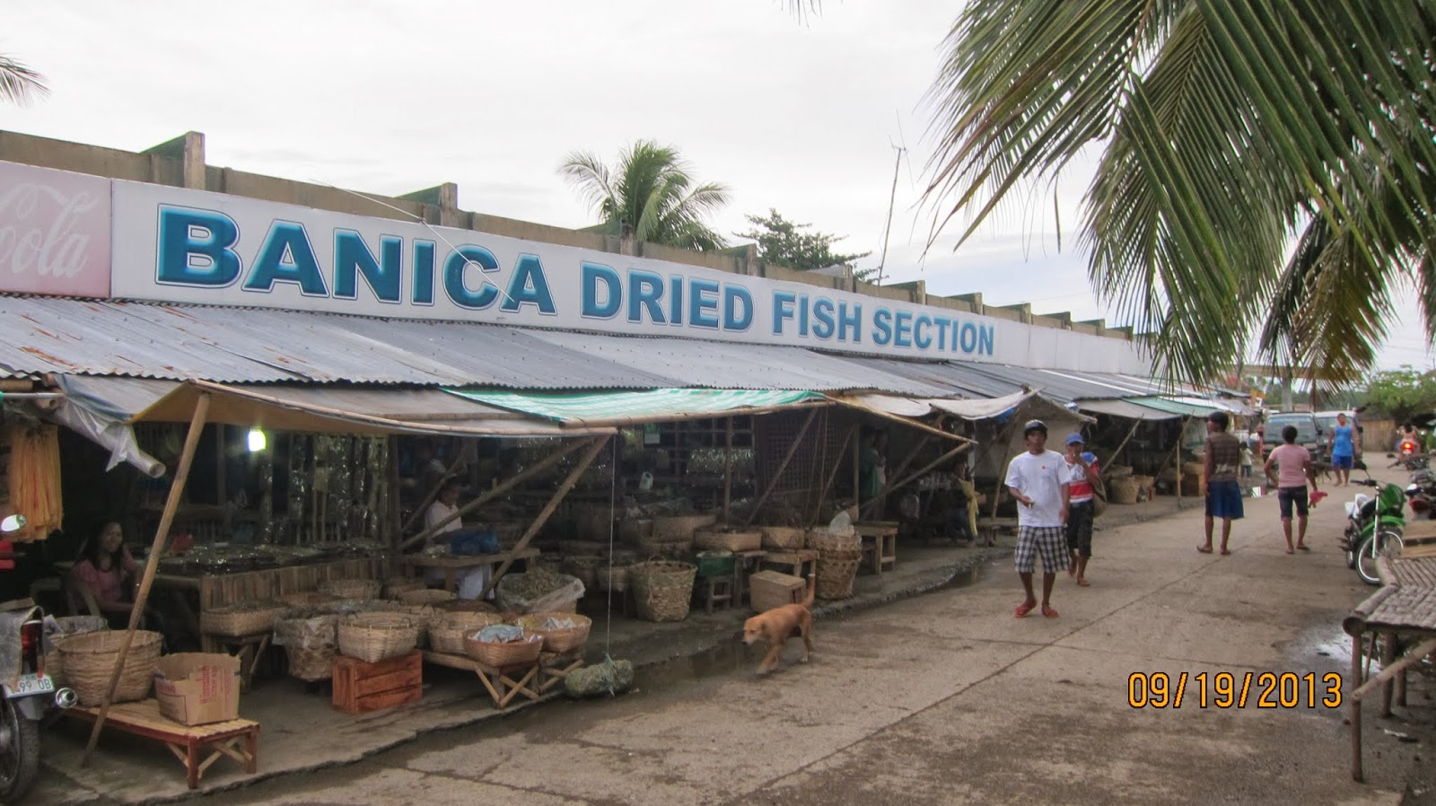 The solitary dolphin a visit to roxas city the country 39 s for City fish market