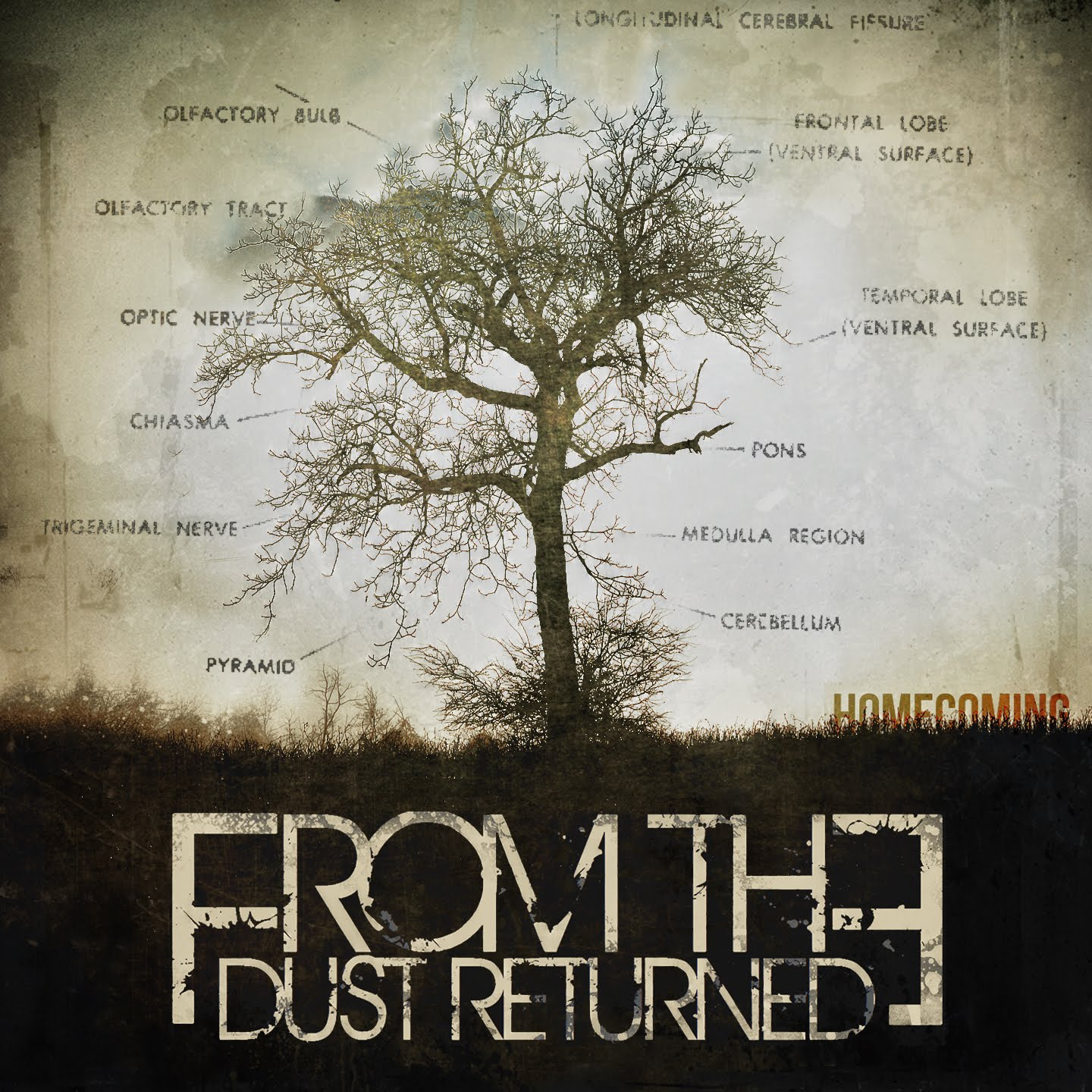 From The Dust Returned - Homecoming