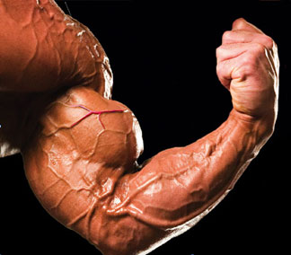 Build Muscles Faster: How To Increase Muscle Vascularity?