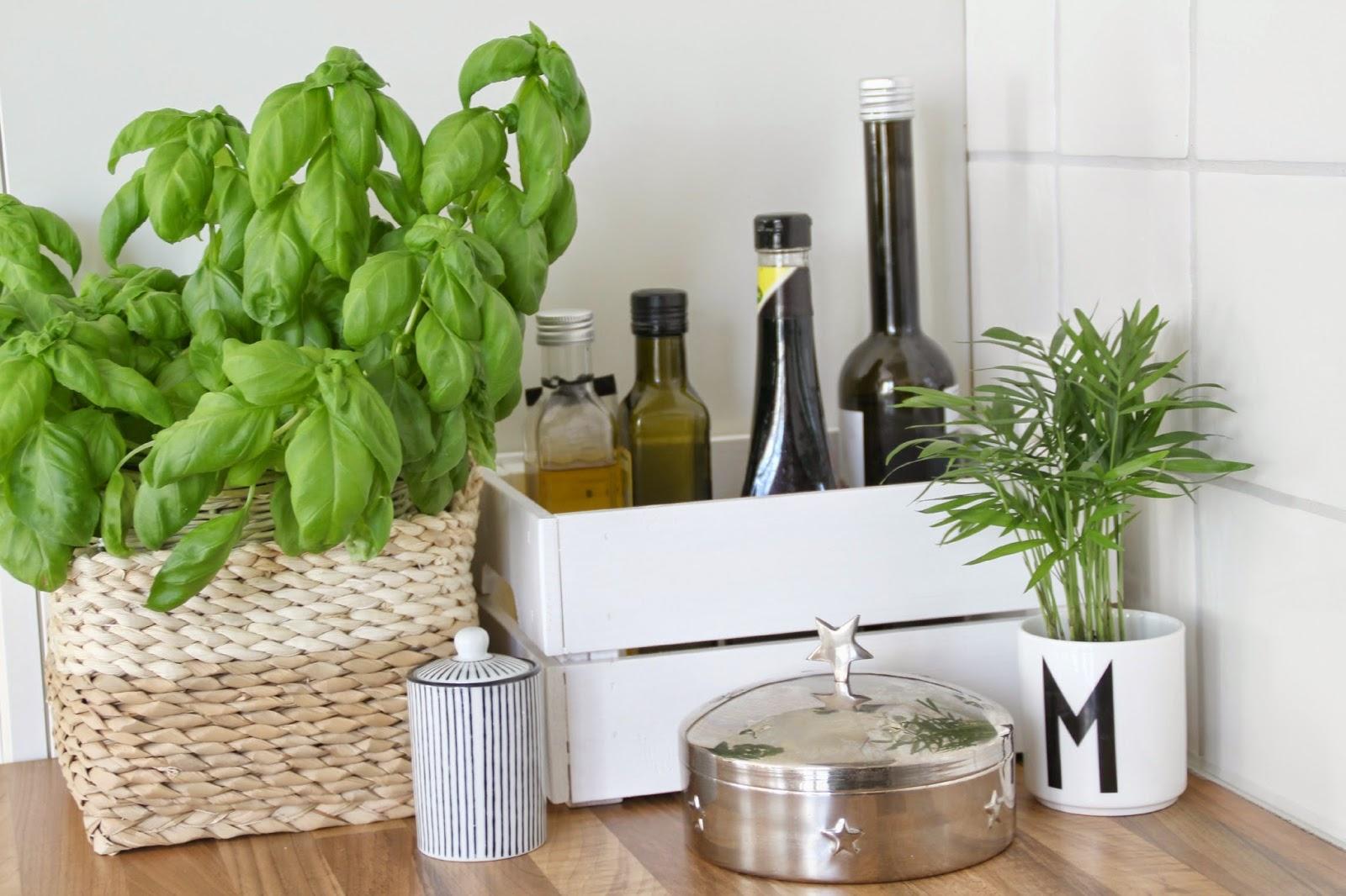 Stilleben in der Küche mit Bastkorb als Übertopf für Basilikum und Knagglig als Utensilo für Ölflaschen im Vordergrund Design Letters Tasse