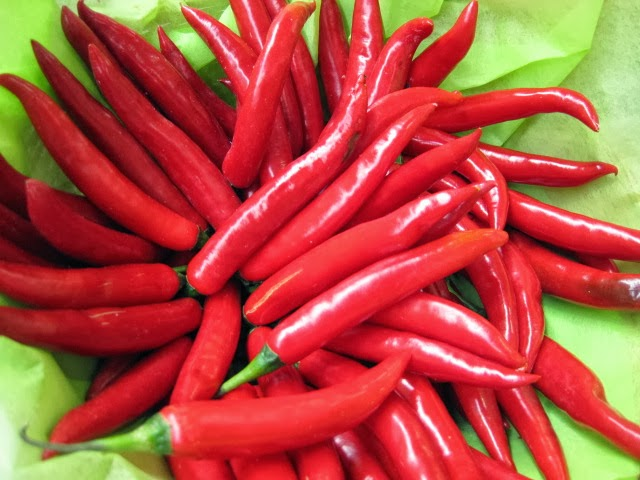 Red pepper cili merah 100 seeds green world red pepper cili merah 100 seeds altavistaventures Images