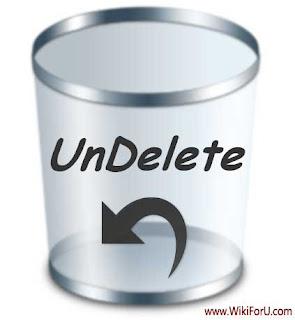 Undelete Files