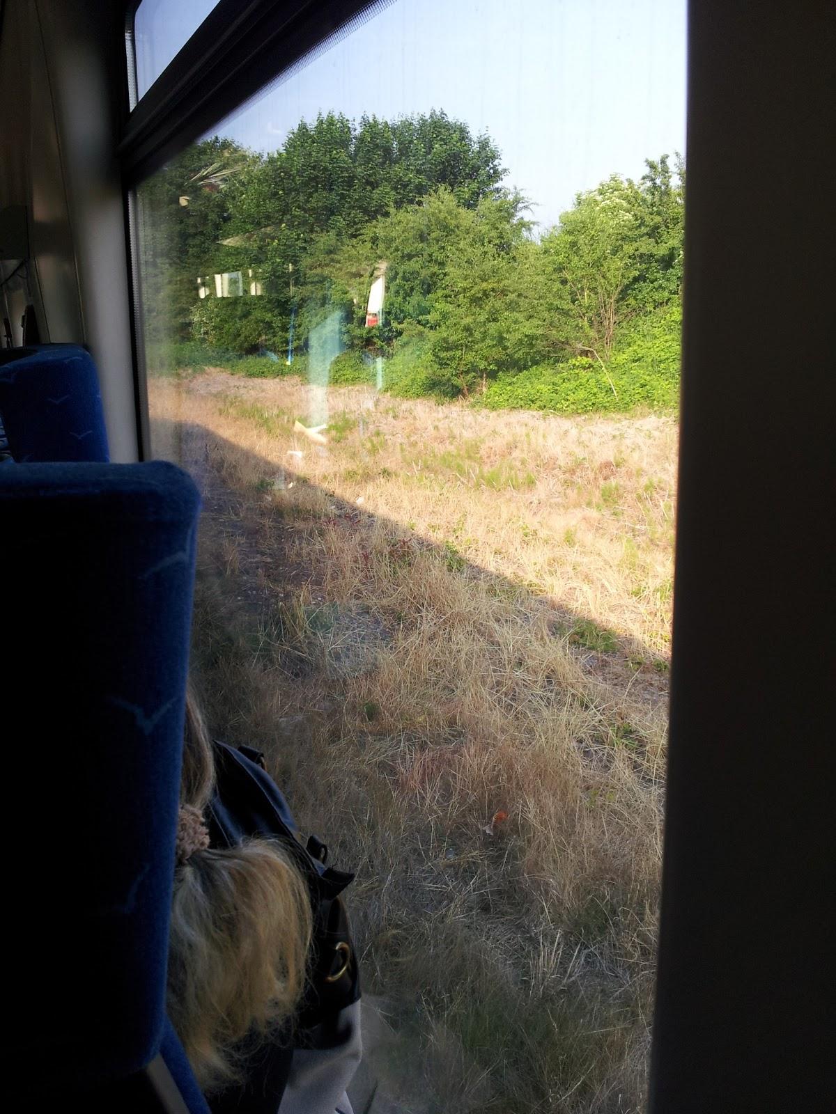 Widok z okna pociągu
