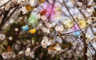 free hd images of welcome spring for laptop